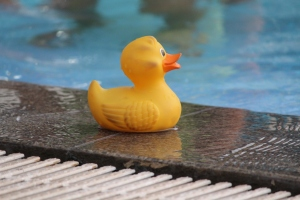 Rubber Ducky @ the Pool