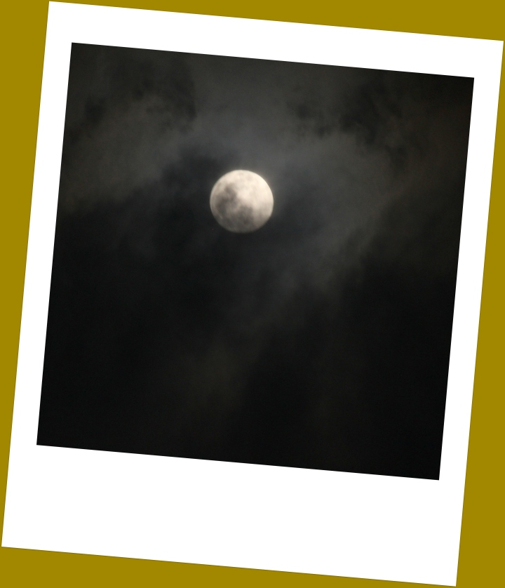 Moonstruck- Polaroid edit.