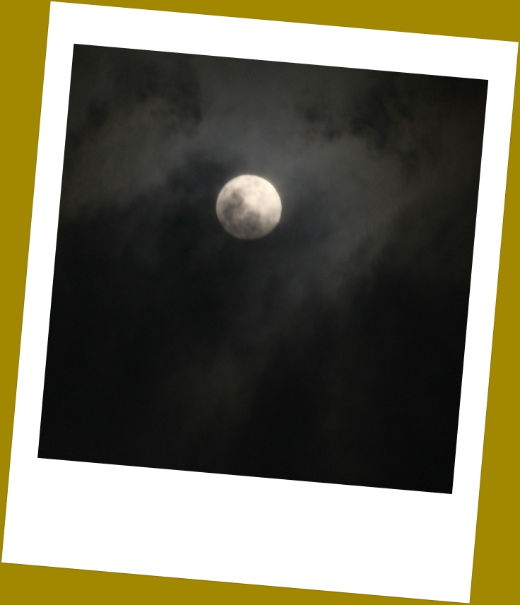 Moonstruck- Polaroid edit.