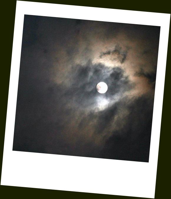 Moonstruck- Polaroid+Contrast Edit.