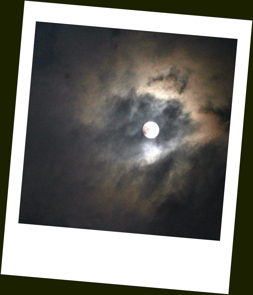 Moonstruck- Polaroid+Contrast Edit.