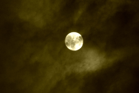 Moonstruck- Vignette Edit.